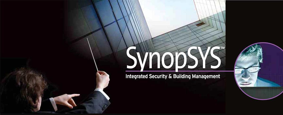 Synopsys di RISCO dettagli